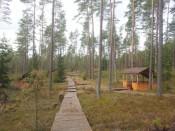 Pavėsinė miške