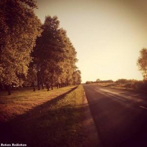 Kelias Ignalina - Didžiasalis Nr. 112